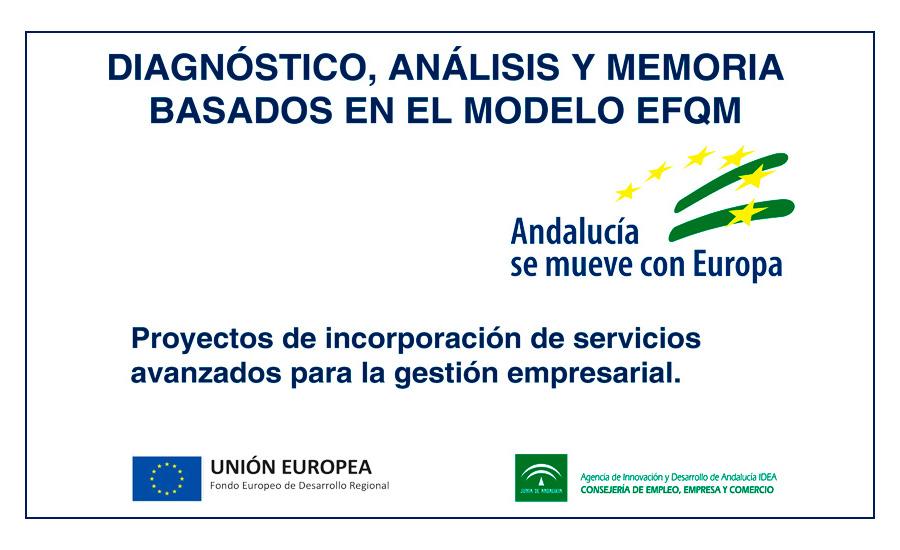 Diagnósticos, Análisis y Memoria basados en el modelo EFQM